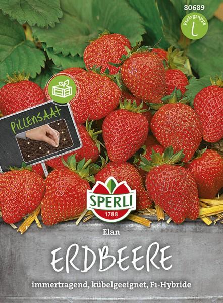 SPERLI Erdbeere 'Elan F1'
