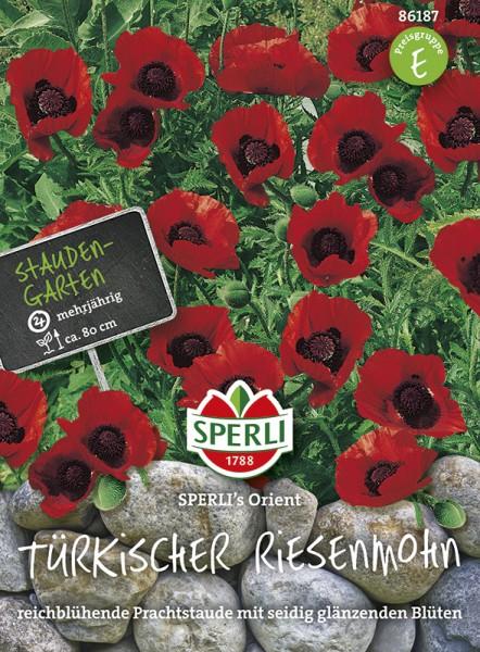 SPERLI Türkischer Mohn 'SPERLI's Orient'