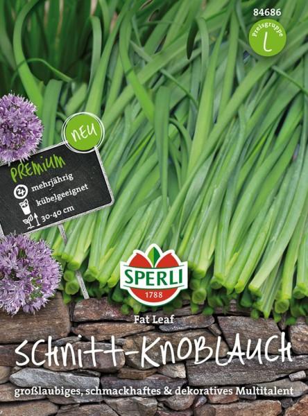 Sperli Schnitt-Knoblauch 'Fat Leaf'