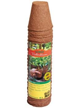 Romberg 24 Anzuchttöpfe,6cm rund