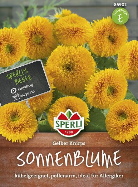 SPERLI Sonnenblume 'Gelber Knirps'