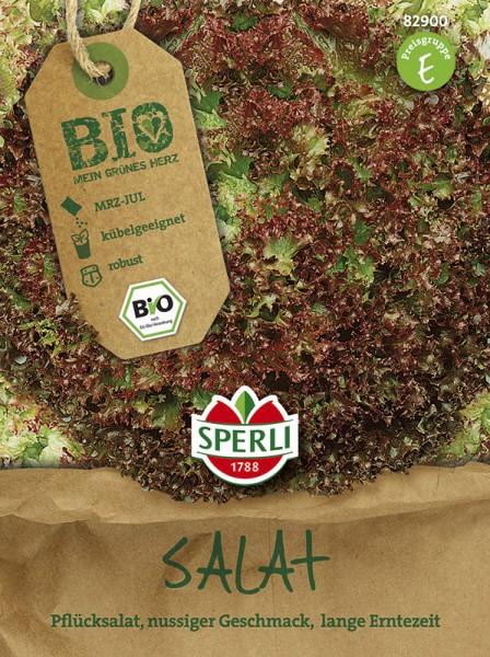 SPERLI Pflücksalat rot, gekraust - Bio-Saatgut