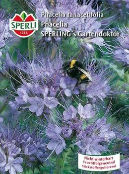 Sperli Phacelia tanacetifolia