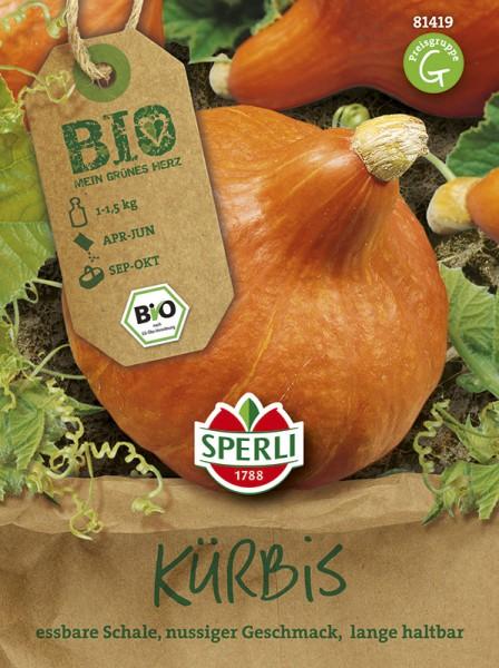 SPERLI Hokkaido-Kürbis 'Solor' - Bio-Saatgut