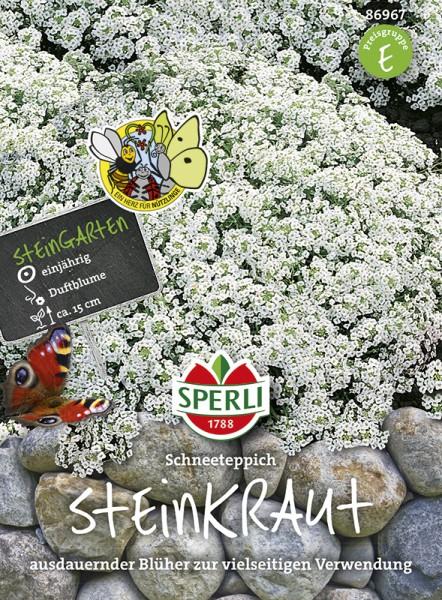 SPERLI Steinkraut / Duftsteinrich 'Schneeteppich'