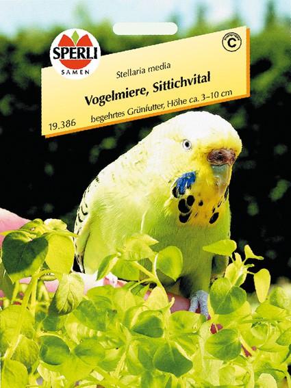 Sperli Vogelmiere, Vogelfit