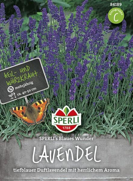 SPERLI Lavendel 'Sperli´s Blaues Wunder '