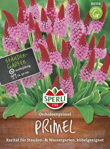 SPERLI Orchideenprimel