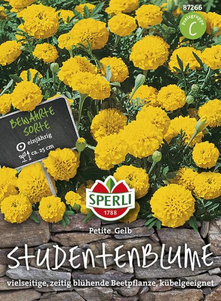 SPERLI Studentenblume 'Petite Gelb'