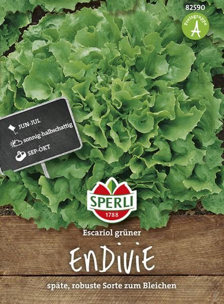 SPERLI Endivie / Winterendivie 'Escariol grüner'