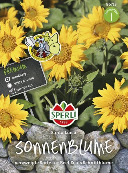 SPERLI Sonnenblume 'Santa Lucia'