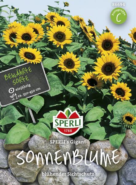 SPERLI Sonnenblume 'SPERLI's Gigant'