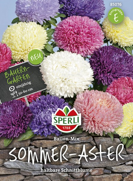 SPERLI Sommeraster 'Ballon-Mix'