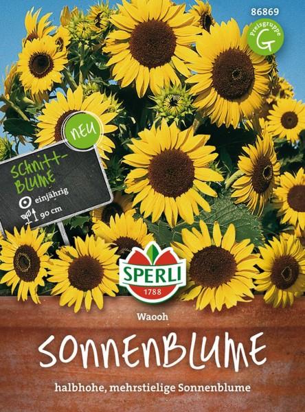 Sperli Sonnenblume 'Waooh'