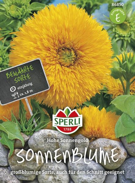 SPERLI Sonnenblume 'Hohe Sonnengold'