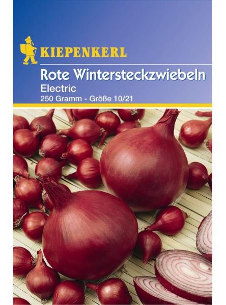 Rote Wintersteckzwiebeln ;Electric - 250 g