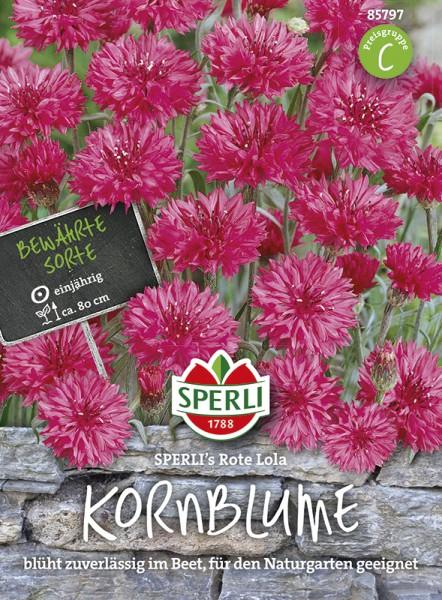 SPERLI Kornblume 'Sperli´s Rote Lola'