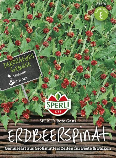 SPERLI Erdbeerspinat 'Sperli's Rote Gans'