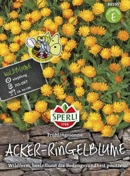 SPERLI Acker-Ringelblume 'Frühlingssonne'
