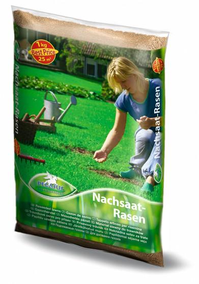 PEGASUS Nachsaat-Rasen - 0,5kg