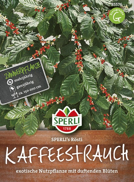 SPERLI Kaffeebaum'Sperli´s Rösti'