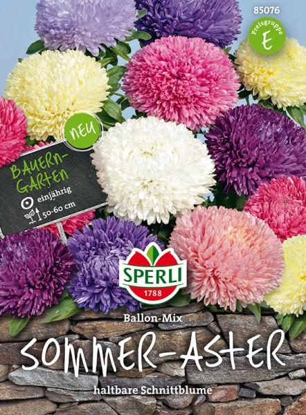 Sommer Aster Ballon Mix - 1 Portion
